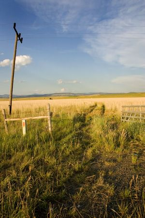 Field with Electric Poles in Helena Montana Stock Photo - 631777