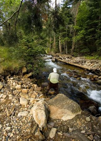 Fisherman in River fly fishing in the Canyons photo