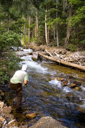 Fisherman in River fly fishing in the Canyons Stock Photo - 2136956