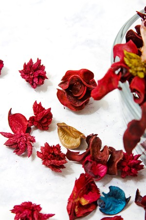 Isolated potpourri - close up on dried leaves and rose photo