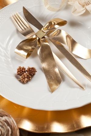 Beautiful and elegant gold place setting for christmas or celebrations Stock Photo - 11195175