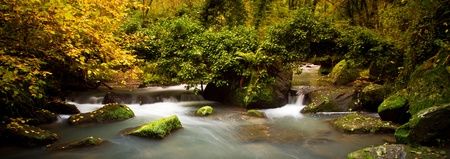 panoramic view of a stream into the wood in autumnal colors Stock Photo