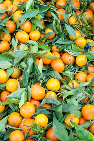 Box of fresh tangerines at market booth Stock Photo - 12551879