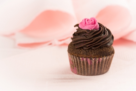 Chocolate cupcake decorated with a pink rose over a pink tablecloth Stock Photo