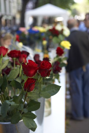 Detail of a bouquet of roses, the Day of the book, Sant Jordi, Barcelona, Spain Stock Photo