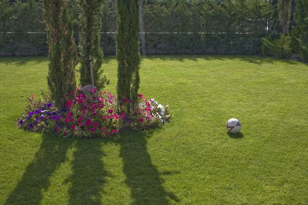 Soccer ball in the lawn of a house Stock Photo - 7175323
