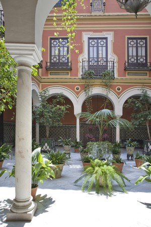 entranceway: Potted plants in the courtyard of a building, Patio, Seville, Spain