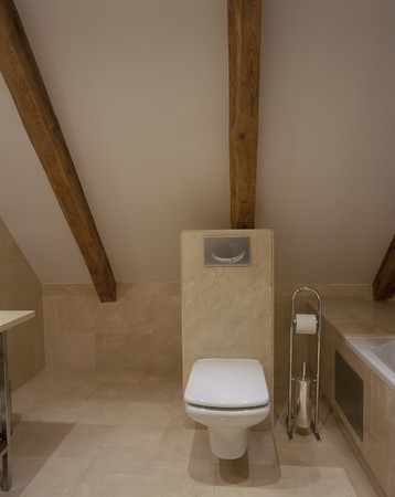 abodes: View of a clean toilet