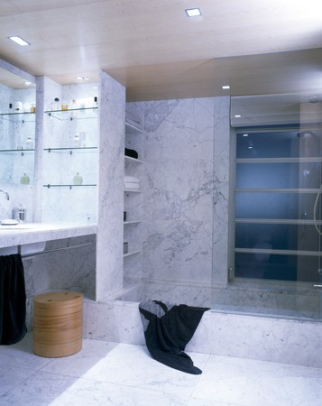 shower stall: View of an elegant bathroom