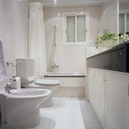 View of a neat bathroom Stock Photo - 7215270