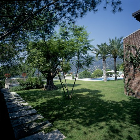 mediterranian style: View of a green lawn on a sunny day