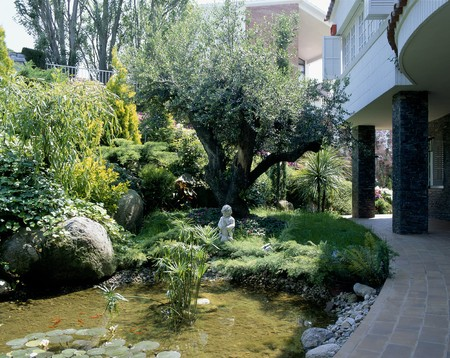 mediterranian homes: A well landscaped house