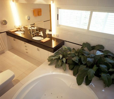 spanish tile: Bathroom with houseplant by bathtub and sink LANG_EVOIMAGES