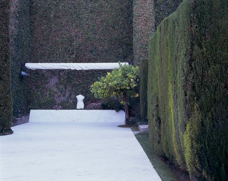 otras: View of design of trees in a garden