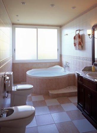 abodes: View of an elegant bathroom