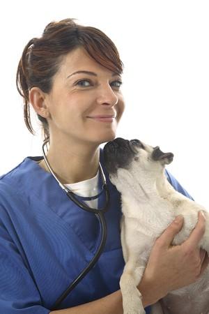 Veterinarian with cat Stock Photo - 7475709