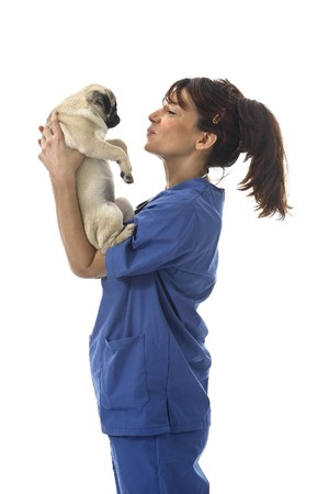 Veterinarian with dog photo