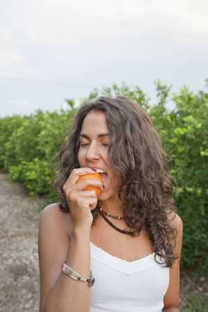 Young Latin Woman eating orange directly from the tree, Valencia, Spain Stock Photo - 7824725