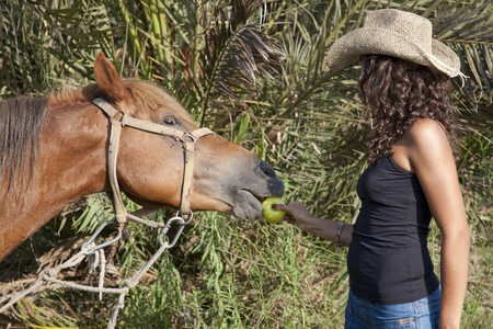Young pretty woman feeding horse with apple. photo