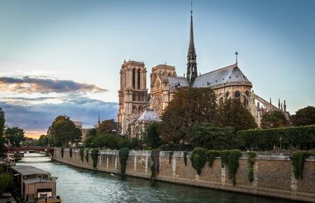 notre dame de paris: View of Notre Dame de Paris at sunset