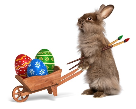 Cute Easter bunny rabbit with a little wheelbarrow and some painted Easter eggs, isolated on white, CG+photo