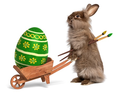 Cute Easter bunny rabbit with a little wheelbarrow and a green painted Easter egg, isolated on white