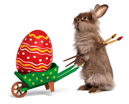 Cute Easter bunny rabbit with a little green wheelbarrow and a red painted Easter egg, isolated on white photo