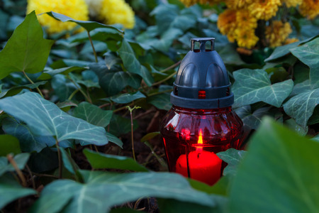 all souls day: All Souls Day or Day of the dead candle is burning between ivy plant leaves and some flowers Stock Photo
