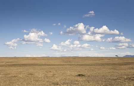 Savannah and cloudscape, Masai Mara, Republic of Kenya, Eastern Africa Stock Photo