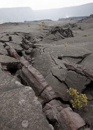 Cracks in the foggy Kilauea Iki crater, Hawaii Volcanoes National Park, Big Island, Hawaii, USA