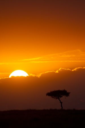 maasai mara: Sunrise over the plains of East Africa, Maasai Mara National Reserve, East Africa Stock Photo