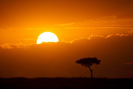 Sunrise over the plains of East Africa, Maasai Mara National Reserve, East Africa Stock Photo