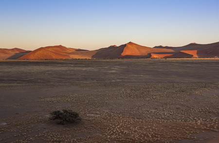 First sunlight on the dunes in the Namib Desert, Namibia, Southern Africa