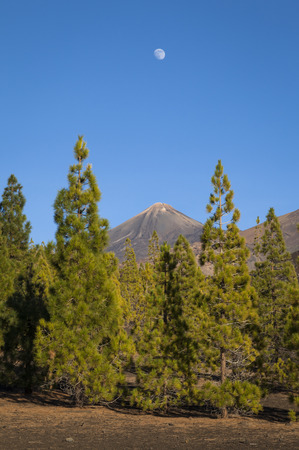 The moon over the volcano Mount Teide, Teide National Park, Canary Islands, Spain