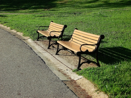 druid: Pair of benches in Druid Hill Park Baltimore, MD.