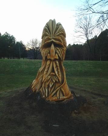 druid: Monsters face carved from the trunk of a tree;  located in Druid Hill Park (Baltimore,MD).