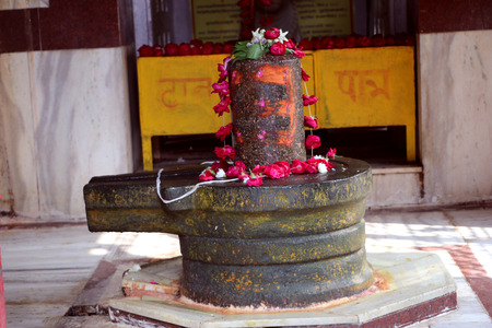 almighty: Lord Shiva : The Almighty Hindu God