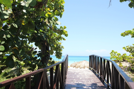 Wooden road through the green jungle to the blue sea