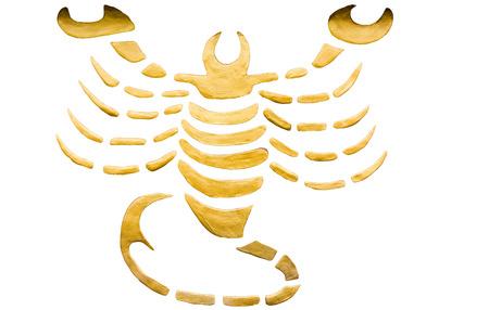Scorpio sign of horoscope isolated on white