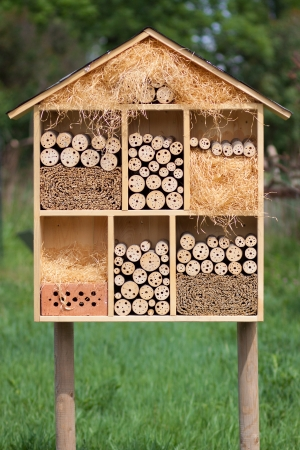 Insect hotel in a green field photo