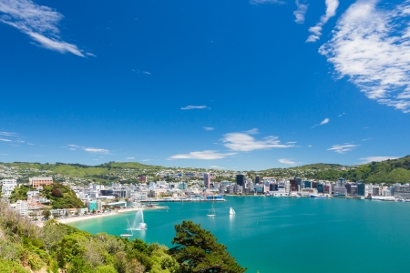 ports: View from Mount Victoria into the bay of Wellington  capital city of New Zealand  Stock Photo