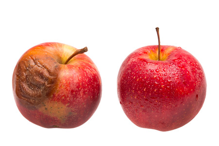 One dozy red apple as comparison to a fresh fruit