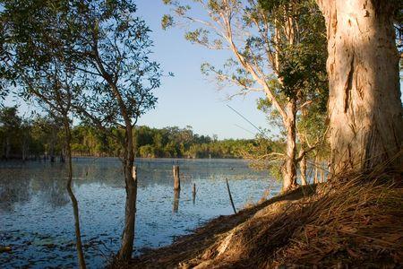 Australian water scene