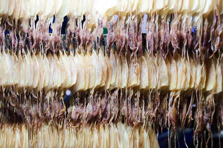 row of dried squid