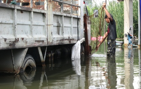 obliteration: LAMLUKKA (PATHUMTHANI), THAILAND – CIRCA NOVEMBER 2011 – A man sets a fishing net using a truck as a stand circa November 2011 in Lamlukka. The entire province has been flooded as a result of an exceptional and unprecedented rainy season.