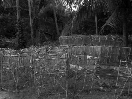 lang: Fish traps on the beach in Ko Phitak Island, Lang Suan district, Chumphon, Thailand