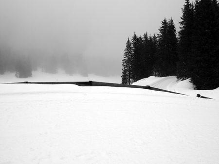 Monochrome winter landscape of a snowy mountain in Asiago, Vicenza, Italy photo