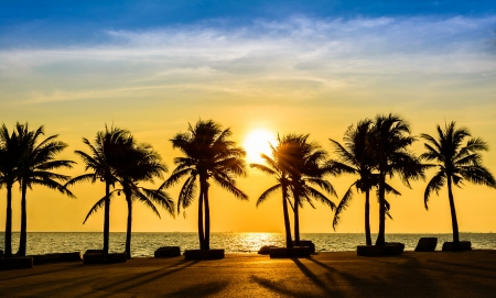 Fantastic tropical beach with palms at sunset, Thailand photo