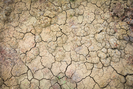 barren: Dry soil texture of a barren land Stock Photo