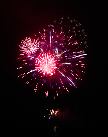 fires artificial: Colorful fireworks in the night sky